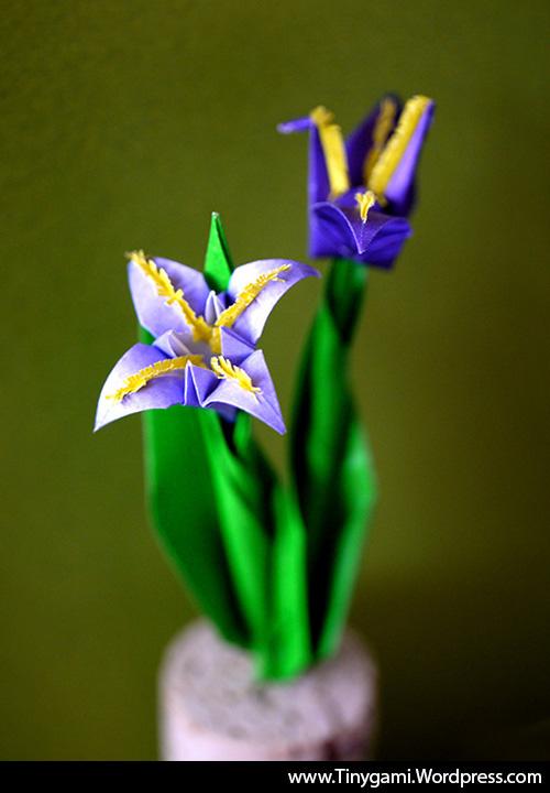 tinygami-miniature-origami-iris-flower